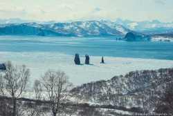 Авачинская бухта зимой