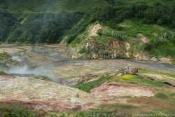 гидротермальная активность на Камчатке