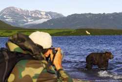 медведи и туристы