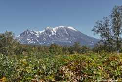Парк Долина Налычево на Камчатке